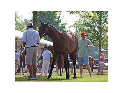 Fasig-Tipton July Sale