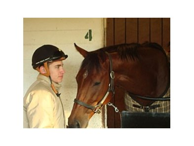 Havelock and exercise rider Chase Miller