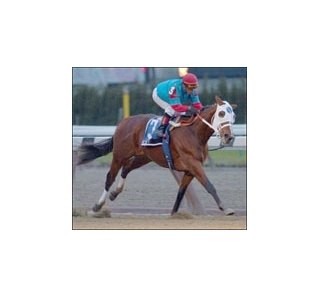 Toccet, among favorites for Hollywood Futurity.