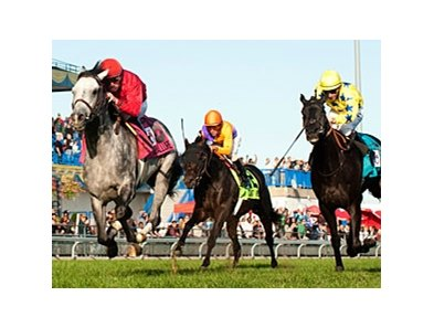 Turallure wins the Woodbine Mile