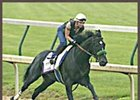 War Emblem, breezing at Churchill Downs Wednesday in preparation for the Belmont Stakes.