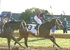 Madcap Escapade returns to Keeneland in Wednesday's Vinery Madison.