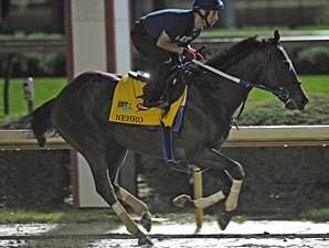 Nehro Carries Zayat's Hopes in Derby 137