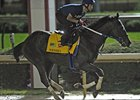 Nehro working at Churchill Downs.