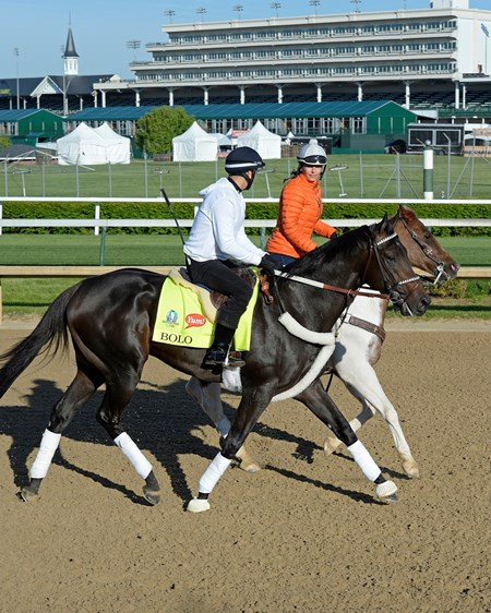 Caption: Bolo