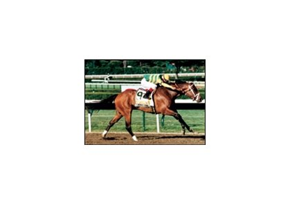 Serena's Song wins the 1995 Haskell Invitational.