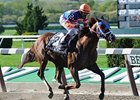 "Caixa Eletronica won the Westchester Stakes at Belmont in April.<br><a target=""blank"" href=""http://www.bloodhorse.com/horse-racing/photo-store?ref=http%3A%2F%2Fpictopia.com%2Fperl%2Fgal%3Fprovider_id%3D368%26ptp_photo_id%3D9509493%26ref%3Dstory"">Order This Photo</a>"