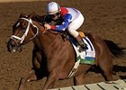 "Azeri, one of 3 horses elected into the National Museum of Racing's Hall of Fame in Saratoga Springs, N.Y. for 2010.<br><a target=""blank"" href=""http://www.bloodhorse.com/horse-racing/photo-store?ref=http%3A%2F%2Fpictopia.com%2Fperl%2Fgal%3Fprovider_id%3D368%26ptp_photo_id%3D7395957%26ref%3Dstory"">Order This Photo</a>"