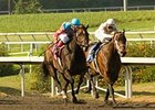 "Witty (left) outfinished Carlsbad in a duel between undefeated fillies in the Railbird Stakes. <br><a target=""blank"" href=""http://www.bloodhorse.com/horse-racing/photo-store?ref=http%3A%2F%2Fgallery.pictopia.com%2Fbloodhorse%2Fgallery%2F69713%2Fphoto%2F8087956%2F%3Fo%3D0"">Order This Photo</a>"