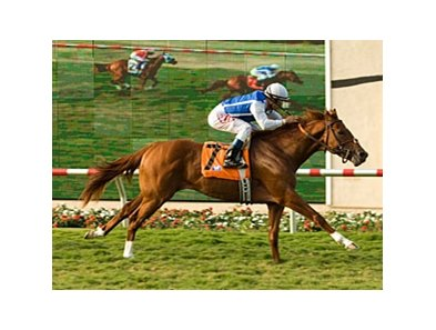 "Meteore pulls away in the La Jolla.<br><a target=""blank"" href=""http://www.bloodhorse.com/horse-racing/photo-store?ref=http%3A%2F%2Fpictopia.com%2Fperl%2Fgal%3Fprovider_id%3D368%26ptp_photo_id%3D8407703%26ref%3Dstory"">Order This Photo</a>"