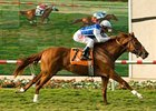 "Richard Mandella sends out Meteore in the American Handicap.<br><a target=""blank"" href=""http://www.bloodhorse.com/horse-racing/photo-store?ref=http%3A%2F%2Fpictopia.com%2Fperl%2Fgal%3Fprovider_id%3D368%26ptp_photo_id%3D8407703%26ref%3Dstory"">Order This Photo</a>"