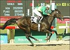 Star Parade wins Milady Breeders' Cup Handicap, Sunday at Hollywood Park.