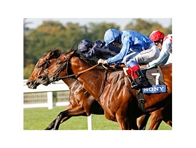 "Poet's Voice, near (light blue) gets his nose in front of Rip Van Winkle to win the Queen Elizabeth II Stakes.<br><a target=""blank"" href=""http://www.bloodhorse.com/horse-racing/photo-store?ref=http%3A%2F%2Fpictopia.com%2Fperl%2Fgal%3Fprovider_id%3D368%26ptp_photo_id%3D9204877%26ref%3Dstory"">Order This Photo</a>"