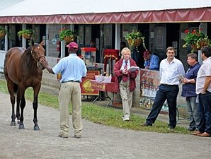 September Sale Session Two: Horses to Watch