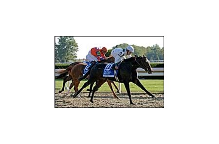 "Country Star kicks clear in the Alcibiades.<br><a target=""blank"" href=""http://www.bloodhorse.com/horse-racing/photo-store?ref=http%3A%2F%2Fpictopia.com%2Fperl%2Fgal%3Fprovider_id%3D368%26ptp_photo_id%3D2436002%26ref%3Dstory"">Order This Photo</a>"