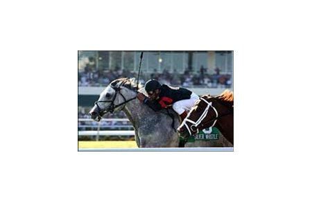 Silver Whistle and Edgar Prado win the Captain Morgan Pan American Handicap  at Gulfstream Park.