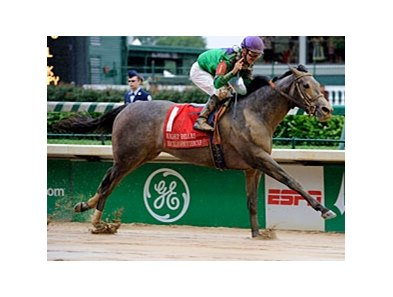"Buckleupbuttercup splashes to victory in the Eight Belles.<br><a target=""blank"" href=""http://www.bloodhorse.com/horse-racing/photo-store?ref=http%3A%2F%2Fpictopia.com%2Fperl%2Fgal%3Fprovider_id%3D368%26ptp_photo_id%3D8937750%26ref%3Dstory"">Order This Photo</a>"