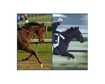 Afleet Alex (left) and Bellamy Road, pictured in final Derby works, are early favorites in advance wagering.