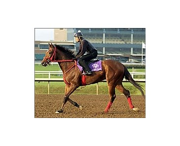 Afleet Alex, scheduled to work later this week for the first time this year.