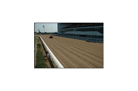 Hollywood Park's Cushion Track, which has been selected for the new surface at Santa Anita.