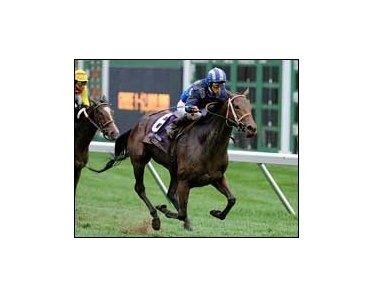 "Lahudood finds the ground to her liking in the Breeders' Cup Filly and Mare Turf.<br><a target=""blank"" href=""http://www.bloodhorse.com/horse-racing/photo-store?ref=http%3A%2F%2Fpictopia.com%2Fperl%2Fgal%3Fprovider_id%3D368%26ptp_photo_id%3D2626288%26ref%3Dstory"">Order This Photo</a>"