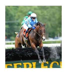Mixed Up jumps strong in the A.P. Smithwick Memorial Steeplechase.