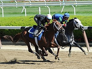 Frosted (right) works in company with Tamarkuz at Belmont Park on May 22, 2015.