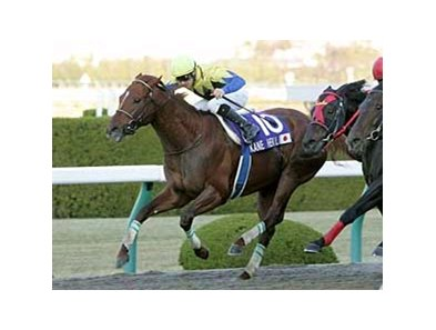 Kane Hekili wins the Japan Cup Dirt at Hanshin Racecourse on Dec. 7.