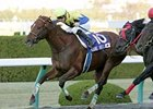 Kane Hekili Captures Japan Cup Dirt
