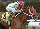 Whirlaway winner Sort It Out has a new owner and trainer.