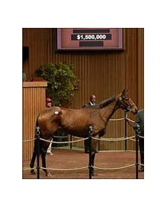 Downthedustyroad tops fourth day of Keeneland sale.