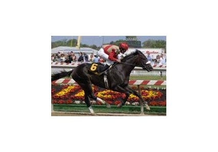 "Chelokee wins the inaugural Barbaro Stakes for Michael Matz.<br><a target=""blank"" href=""http://www.bloodhorse.com/horse-racing/photo-store?ref=http%3A%2F%2Fpictopia.com%2Fperl%2Fgal%3Fprovider_id%3D368%26ptp_photo_id%3D1229952%26ref%3Dstory"">Order This Photo</a>"