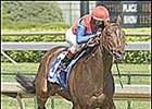 Midas Eyes, in his Derby Trial victory, is expected to run in the Dwyer Stakes.