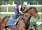 Probable Travers favorite Roman Ruler, works at Saratoga on Monday.