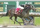 Happy Trails, winning the Jersey Derby.