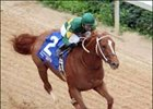 Curlin shown winning the Arkansas Derby, prepped this morning at Churchill.