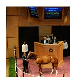 Hip #451 colt; Speightstown - Motel Lass by Bates Motel, brought $335,000 during the July 21 final session of the Fasig-Tipton July yearling sale in Lexington.