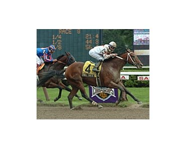 Bwana Charlie, winning the Amsterdam Stakes at Saratoga earlier this year.