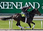 Goodeveningofficer, filly; Officer - Alligator Allie by Gone West, runs at Keeneland on April 3.