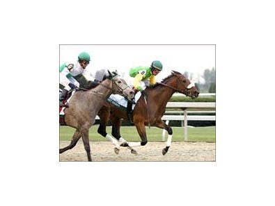 "Street Sounds, scoring a neck victory over favorite Forever Together in the Stonerside Beaumont Stakes.<br><a target=""blank"" href=""http://www.bloodhorse.com/horse-racing/photo-store?ref=http%3A%2F%2Fpictopia.com%2Fperl%2Fgal%3Fprovider_id%3D368%26ptp_photo_id%3D1000182%26ref%3Dstory"">Order This Photo</a>"