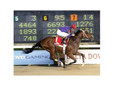 Golden Yank heads the field Zia Park Derby Dec. 6.