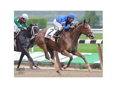 "Music Note pulls away from Unbridled Belle to win the Beldame.<br><a target=""blank"" href=""http://www.bloodhorse.com/horse-racing/photo-store?ref=http%3A%2F%2Fpictopia.com%2Fperl%2Fgal%3Fprovider_id%3D368%26ptp_photo_id%3D8530536%26ref%3Dstory"">Order This Photo</a>"