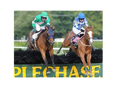 Dark Equation (left) on his way to victory in the New York Turf Writers Cup Steeplechase Handicap.