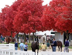 Stakes Winning Filly Tops Keeneland Session