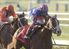 Circular Quay Takes Orbit in Louisi