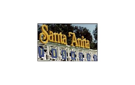 Beyond Santa Anita in 2008, site selection for future Breeders' Cups has yet to be finalized.