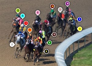 2015 Oaks Race Sequence