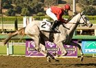 "Stardom Bound <br><a target=""blank"" href=""http://www.bloodhorse.com/horse-racing/photo-store?ref=http%3A%2F%2Fpictopia.com%2Fperl%2Fgal%3Fprovider_id%3D368%26ptp_photo_id%3D6136097%0D%0A%26ref%3Dstory"">Order This Photo</a>"