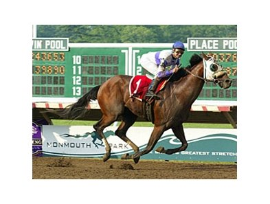 Notional will stand at Spendthrift in 2009.