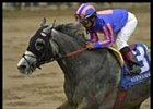 Duckhorn, romping to victory in the Ben Ali earlier this year, was scratched from the Maryland Million Classic.